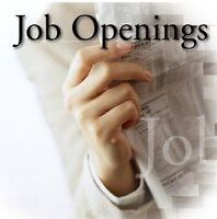 Earn $600-$1000/wk - No Experience Required