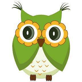 Cute green owl Wall Sticker - Totally Movable Brisbane City Brisbane North West Preview