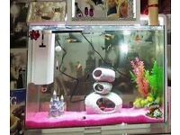 80ltr Fish Tank for sale