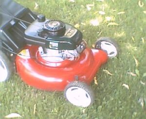 """Craftsman 5,5hp 21"""" lawnmower with bag"""