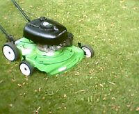 Lawnboy 6.5hp Duraforce self propelled lawnmower