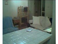 Large One Bedroom Flat in Southfields (no deposit)