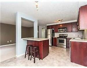 Room For Sublet January - April 2017 - Clean and Friendly! Kitchener / Waterloo Kitchener Area image 2