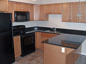 Lakewood - Beautiful 2 Bdrm Condo Suite for Rent