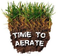 *Professional Lawn Aerating Service*