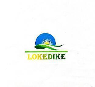 Lokedike