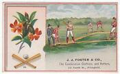Advertising Baseball Trade Card