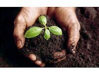 Soil (black ground) for FREE