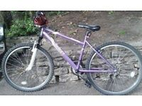 Apollo Twilight Mountain Bike with warranty