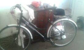 refelex bike