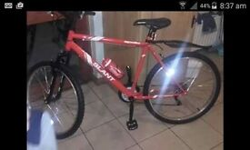 Brand new mens mountain bike.bargain for fast sale!!