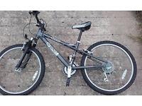 Dawes Bandit Kids Bicycle (24 inch wheel)