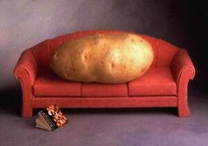 Classic Comfy Sofa in Excellent Condition.