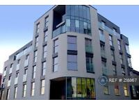 1 bedroom flat in Furnival Street, South Yorkshire, S1 (1 bed)