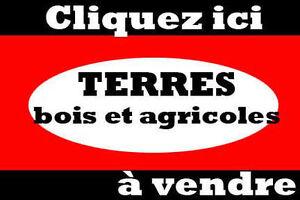 Partout au Québec, fermes, fermettes, terres à bois et agricole