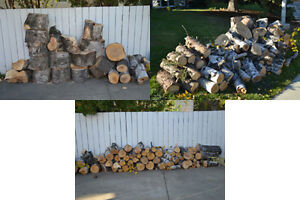 Fresh Birch Firewood