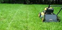 Labor work mowing lawns an Landscaping