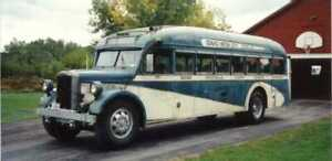 Wanted Classic Shorty Bus
