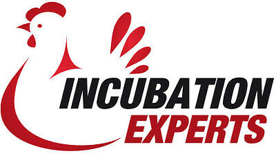 Incubation Experts