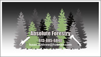 Absolute Forestry