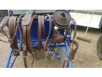 Horse pony Harness