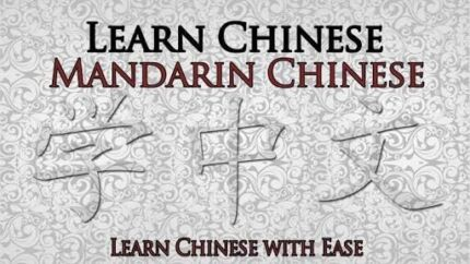 Learn Mandarin Chinese from $20/hour affordable learning Kotara Newcastle Area Preview
