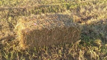 Square Mulch For Sale,  Spring Sale, order 50 bales FREE DELIVERY