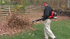 $69.99 Leaf blower Service Snow is coming