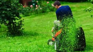 JJ's Gardening & Maintenance including Handyman & Landscaping Melbourne CBD Melbourne City Preview