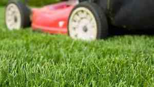 Kevin & sons lawn mowing and garden services Ingleburn Campbelltown Area Preview