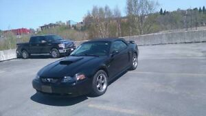 2003 Ford Mustang G.T. BLACK LEATHER INTERIOR Convertible