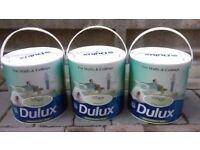 DULUX Luxurious Silk Paint 2.5L (Green)
