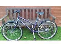 Ladies Raleigh Amazon Bike For Sale £20 O.N.O - Genuine Reason For Sale