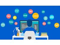 ONLINE BEST CODING LESSONS PYTHON / WEB SCRAPING N DATABASE