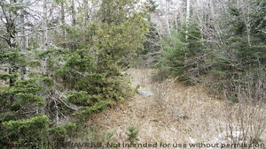 Partially Cleared lot to Build Your Dream Home on