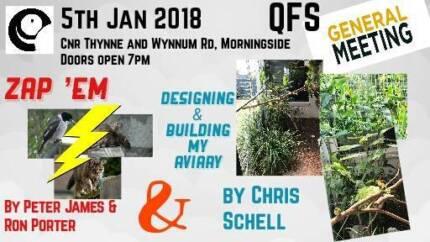 Finch Society (Qld) - January Meeting
