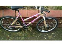 Brand new Ladies Octane mountain bike