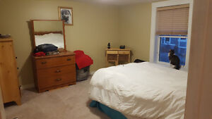Centrally Located 2-Bedroom Townhouse - Available Feb 1 St. John's Newfoundland image 2