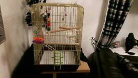 BARGAIN Brand new birdcage with toys attached