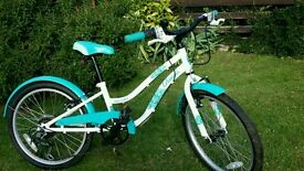 20 inch girls bike 2 years old, hardly used.