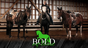 !!Training for April with Bold Equine !!