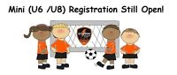 Dartmouth Kids! Storm Soccer Mini Program starts Sat, Oct 17th!