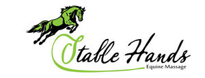Stable Hands Equine Massage Therapy Kitchener / Waterloo Kitchener Area image 1