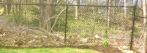 NEWER CHAIN LINK FENCE with 1 gate