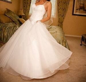 Beautiful Wedding Gown Veil included
