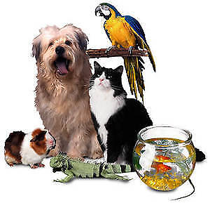 Our Furry Friends Pet-Sitting  ♥ We're there when you can't be ♥
