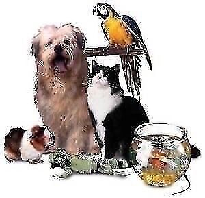 OUR FURRY FRIENDS ♥ We're There When You Can't Be ♥