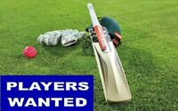 Cricket Players Wanted