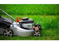 Glasgow Grass Cutting Service First Cut front and back Phone 07856118660