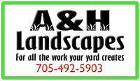 Lawn maintenance and more!